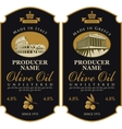 Label for olive oil vector image vector image