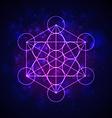 metatrons cube - flower life vector image vector image