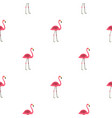 pink flamingo pattern seamless vector image