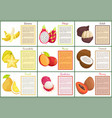 coconut and banana carambola posters set vector image vector image