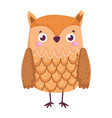 cute owl bird animal cartoon isolated icon vector image vector image