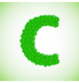 grass letter C vector image vector image