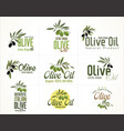 olive retro labels collection vector image vector image