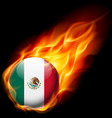 Round glossy icon of united mexican states vector image vector image