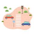 safe traffic cars zebras signs traffic lights vector image