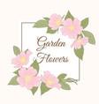 wild rose garden flowers broder frame template vector image vector image