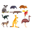 australia wild animals cartoon popular nature vector image vector image