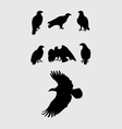 Eagles Silhouettes vector image vector image