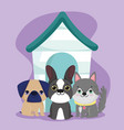 pet shop cute little puppies sitting with wooden vector image vector image