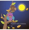 Spiders in the web tree and owl vector image