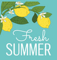 tropical citrus lemon fruits bright summer card vector image vector image