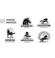 a set badges frisky horses vector image vector image