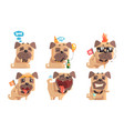 cute pug dog with various emotions set adorable vector image vector image