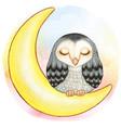 cute watercolor barn owl sleeping on moon vector image
