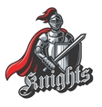 Knight sport logo in color vector image