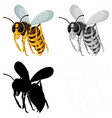 set bee on white background vector image