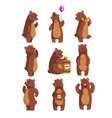 set with funny bear forest animal waving by paw vector image vector image