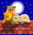 cats on roof vector image