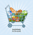 shopping shopping cart products business vector image vector image