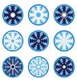 Snowflakes Ornaments vector image vector image