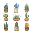 watercolor set cacti and succulent vector image vector image