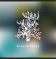branch coral drawing sea vector image