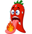 cartoon chili pepper with a tongue burning vector image vector image