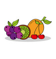 mango grapes kiwi cherry fruits nutrition vector image