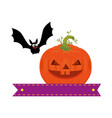 pumpkin hallooween with vampire decorative icon vector image vector image