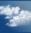 transparent white cloud vector image vector image
