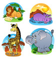 various tropical animals 1 vector image