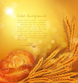 background with gold ears of wheat bun sunrays vector image