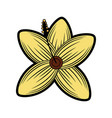 flower wild icon image vector image vector image