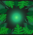 green tropical exotic leaves around green ballon vector image vector image