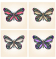 set butterflies elegant insects vector image