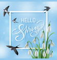 spring sale lettering on a blur sky vector image vector image