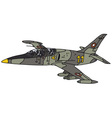 Camouflage jet aircraft vector image