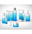 Cosmetics Decorative Set vector image vector image