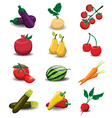 Fruits and vegetables collection vector image