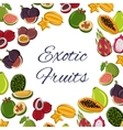 Fruits poster tropical or exotic food vector image vector image