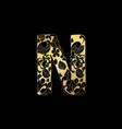 golden ornamental alphabet letter n font vector image
