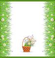 green grass daisy chamomile border frame vector image vector image