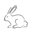 outline draw rabbit vector image vector image