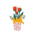 spring red tulip flowers in flowerpot beautiful vector image vector image