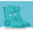 Winter sports and wear accesories vector image vector image