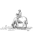 asian farmer man is riding buffalo hand drawn vector image vector image