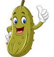 cartoon happy pickle giving a thumb up vector image vector image