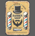 cut shave trim services in barber shop salon vector image
