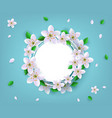 floral badge with spring white apple or cherry vector image vector image