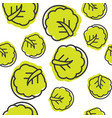 seamless outline chinese cabbage vegetable vector image vector image